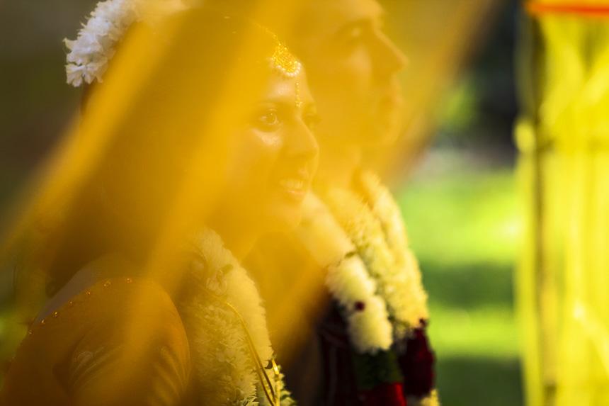 indian wedding report